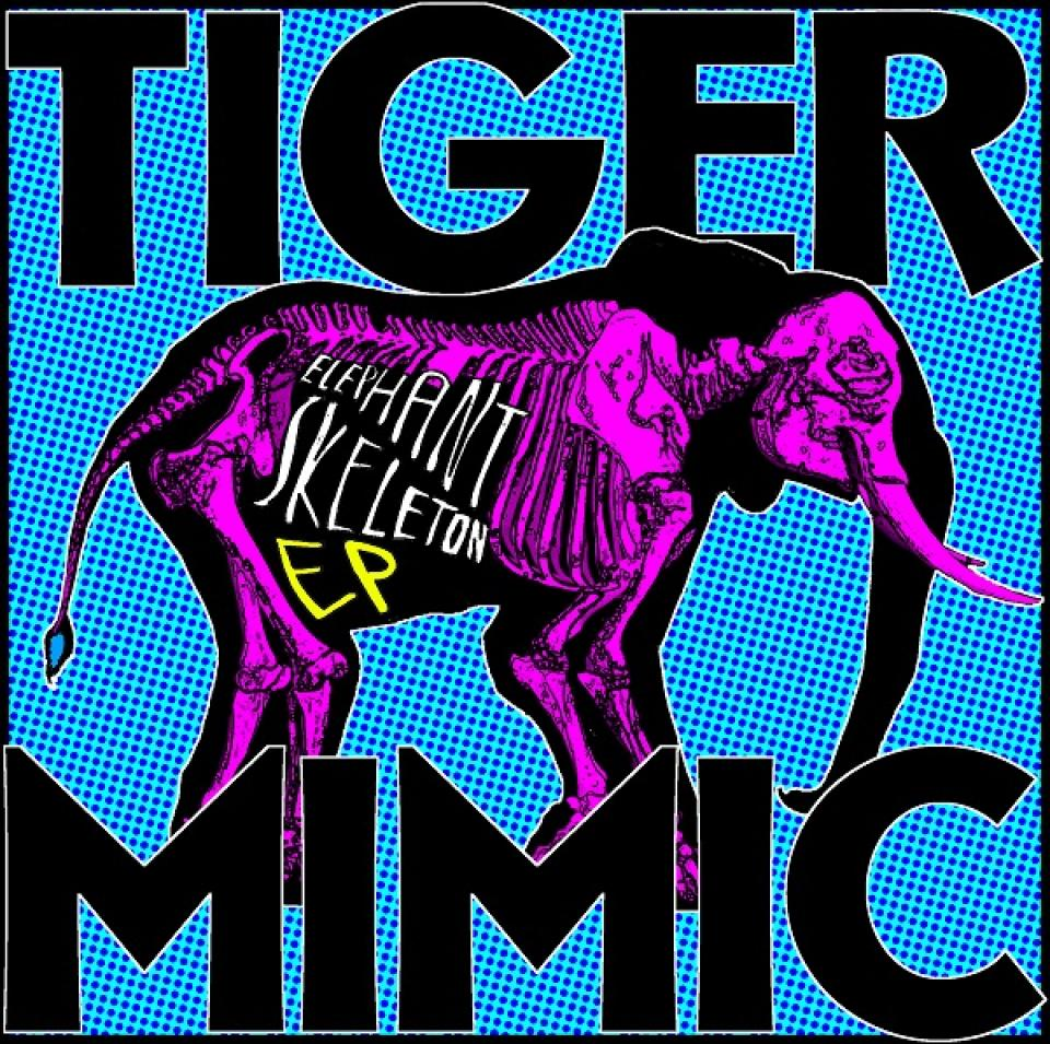 Article photo - Tiger Mimic and the making of