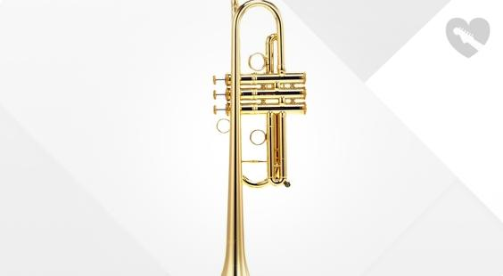 Is Carol Brass CTR-4000H-YSS-C-L the right music gear for you? Find out!