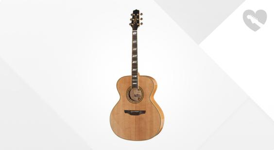 Full preview of Takamine F250SM