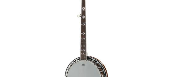 """Take the """"IS IT GOOD FOR ME"""" test for """"Harley Benton BJ-55Pro 5 String Banjo"""", read the reviews and join the community!"""