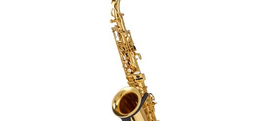 "Take the ""IS IT GOOD FOR ME"" test for ""Startone SAS-75 Alto Saxophone"", read the reviews and join the community!"