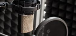 Article photo - MnG Reviews - AKG C214: Affordable versatility across the board