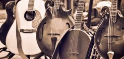 Article photo - Bluegrass Instruments: A Guide for Beginners