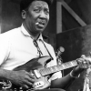 A fan of Muddy Waters matches 52% with Ibanez AEGB20E-VV or a relevant item