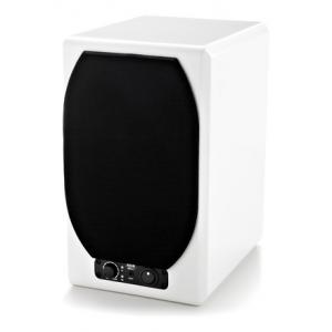 Is Adam Artist 5 Glossy White B-Stock a good match for you?
