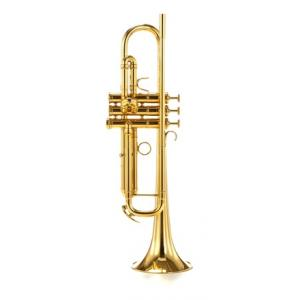 Is Adams A5 FG-GL Bb- Trumpet a good match for you?
