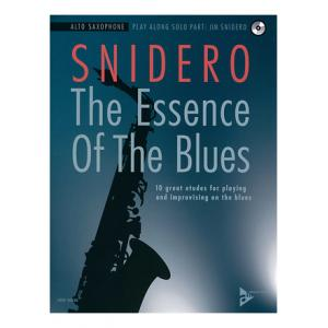 Is Advance Music Essence Of Blues A-Sax a good match for you?