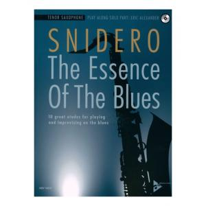Is Advance Music Essence Of Blues T-Sax a good match for you?