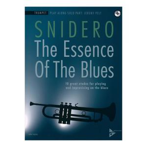 Is Advance Music Essence Of Blues Trumpet a good match for you?