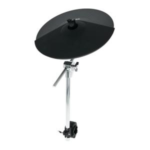 Is Alesis DMPad 14' Ride Cymbal a good match for you?