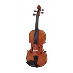 Is Alfred Stingl by Höfner AS-170-V Violin Set 1/2 a good match for you?