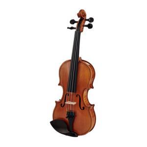 Is Alfred Stingl by Höfner AS-170-V Violin Set 1/8 a good match for you?