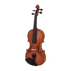 Is Alfred Stingl by Höfner AS-170-V Violin Set 3/4 a good match for you?