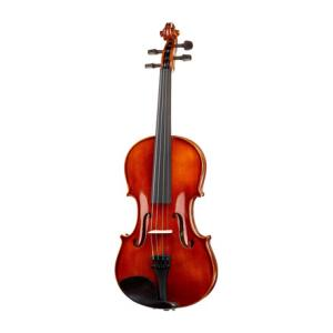 Is Alfred Stingl by Höfner AS-190-V Violin Set 3/4 a good match for you?