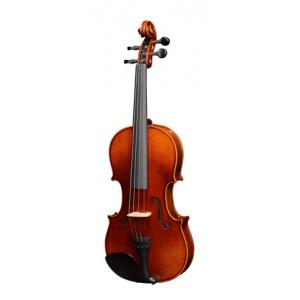 Is Alfred Stingl by Höfner AS-280-V 4/4 Violin Outfit a good match for you?