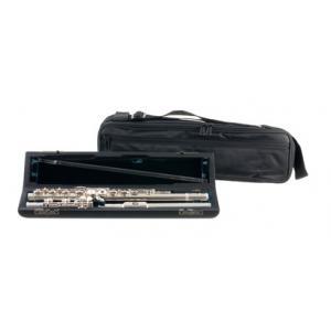 Is Altus 1007 ER Transverse Flute a good match for you?