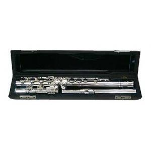 Is Altus 907 E Transverse Flute a good match for you?