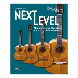 Is AMA Verlag Next Level 1,2,3+4 Guitars a good match for you?