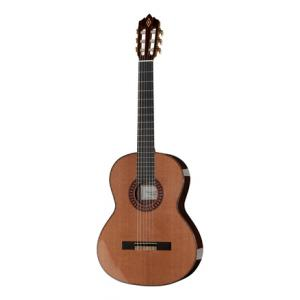 Is Amalio Burguet Vanessa Cedar the right music gear for you? Find out!