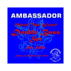 Is Ambassador Double Bass Strings a good match for you?
