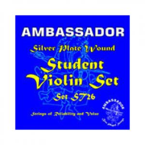 Is Ambassador Violin Student Silver Plate a good match for you?