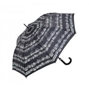 Is Anka Verlag Walking-Stick Umbrella Black a good match for you?