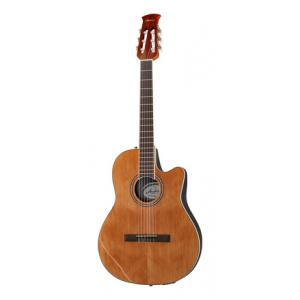 Is Applause AB24CII Mid Cutaway Nylon a good match for you?