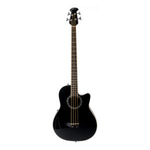 Is Applause AE140-5 Bass a good match for you?