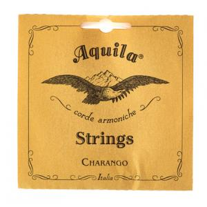 Is Aquila 1CH Nylgut Charango a good match for you?
