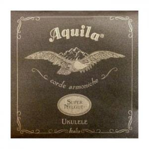 Is Aquila Corde Tenor High-G Super Nylgut a good match for you?
