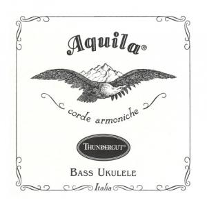 Is Aquila Corde UBass Strings Thundergut a good match for you?