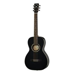 Is Art & Lutherie AMI Steel BK a good match for you?