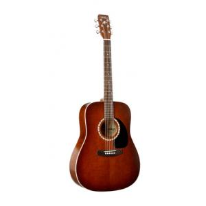 Is Art & Lutherie Dreadnought Antique Qu B-Stock a good match for you?
