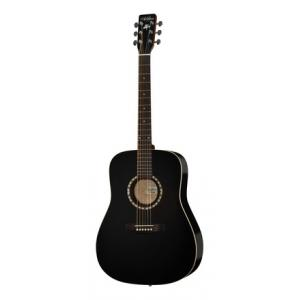 Is Art & Lutherie Dreadnought Black a good match for you?