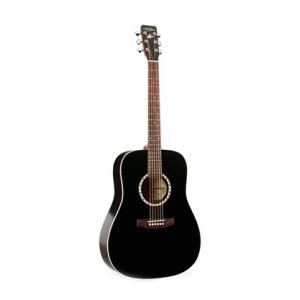 Is Art & Lutherie Dreadnought Black Quantum I a good match for you?