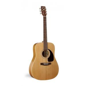 Is Art & Lutherie Dreadnought Cedar a good match for you?