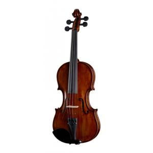 Is Artino VN-135 Violin Set 4/4 a good match for you?