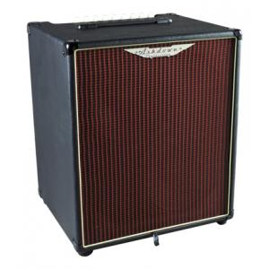 Is Ashdown AAA-300-210T Bass Combo a good match for you?