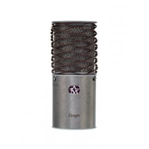 Is Aston Microphones Origin a good match for you?