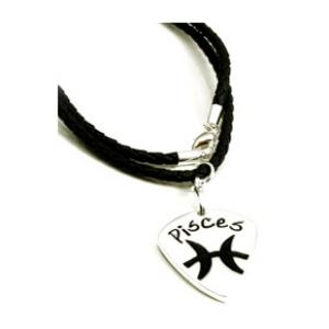 Is AT Picks Metal Plectrum Pisces a good match for you?