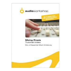 Is Audio Workshop Mixing Praxis Tutorial-Video a good match for you?