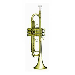 Is B&S eXquisite Bb-Trumpet a good match for you?