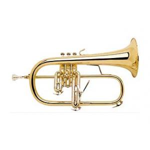 Is Bach 183G Bb Flugelhorn the right music gear for you? Find out!