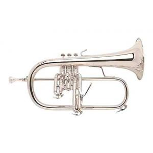 "Take the ""IS IT GOOD FOR ME"" test for ""Bach 183R S Flugelhorn"", read the reviews and join the community!"