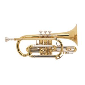 "Take the ""IS IT GOOD FOR ME"" test for ""Bach 184 G Cornet"", read the reviews and join the community!"