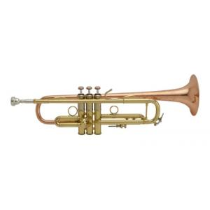 Is Bach LR19043B lacquered Bb- Trumpet a good match for you?
