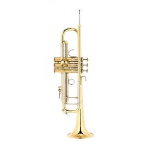 Is Bach ML19043 Bb- Trumpet lacquered a good match for you?