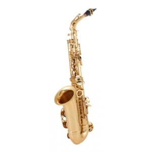 Is C.Giant Alto Saxphone a good match for you?