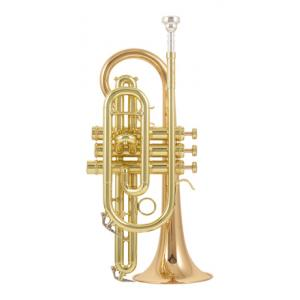 Is Carol Brass CCR-3880-GSS-Bb-L a good match for you?