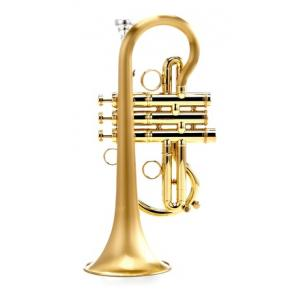 Is Carol Brass CCR-5000-YSS-Eb-SLB a good match for you?